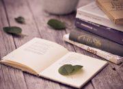 Soạn bài một số thể loại văn học kịch nghị luận | Làm văn mẫu