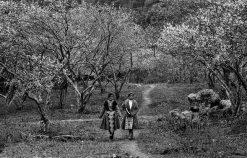 Cảm nhận của anh chị về hình tượng thiên nhiên và con người Việt Bắc qua đoạn thơ sau: Ta về, mình có nhớ ta .. Nhớ ai tiếng hát ân tình thủy chung