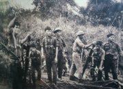 Chứng minh tính sử thi lãng mạn qua Rừng Xà Nu | Văn mẫu